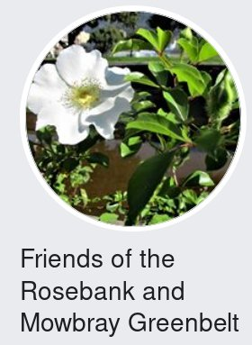 Friends of Rosebank and Mowbray Green Belt (FROG)