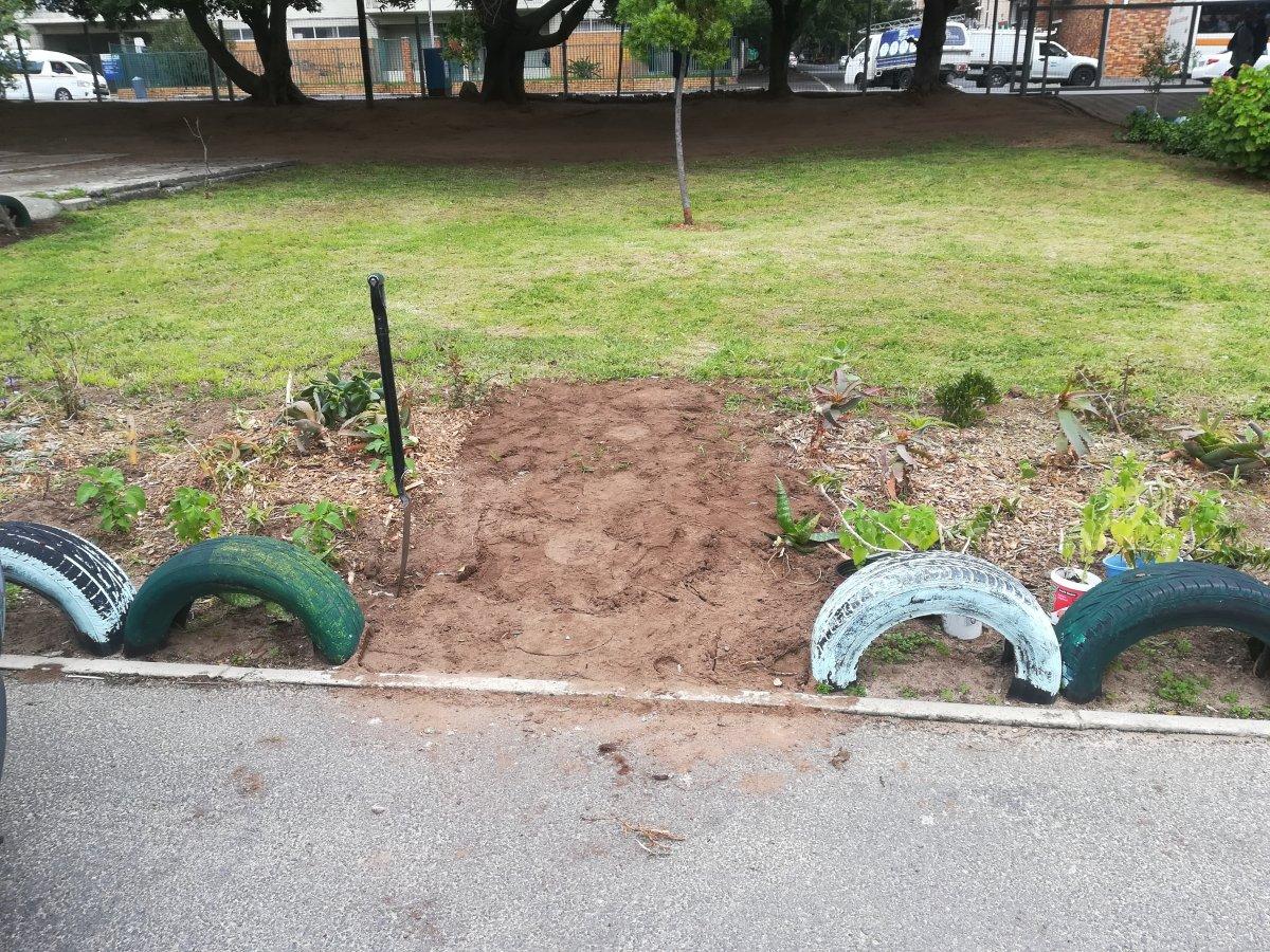 Image Result For Gardening Equipment